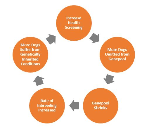 health testing and inbreeding circle